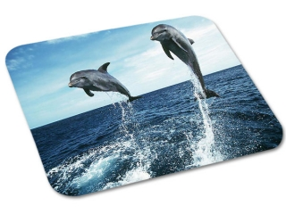 Mousepad 495x380mm